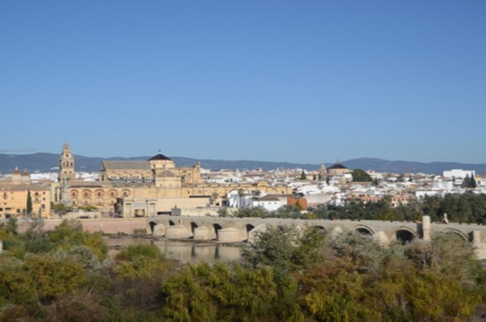 Cordoba Day Tour With a Local Expert From Seville