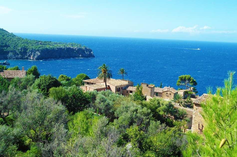 Mallorca: Private Half-day tour Valldemossa and Port de Soller