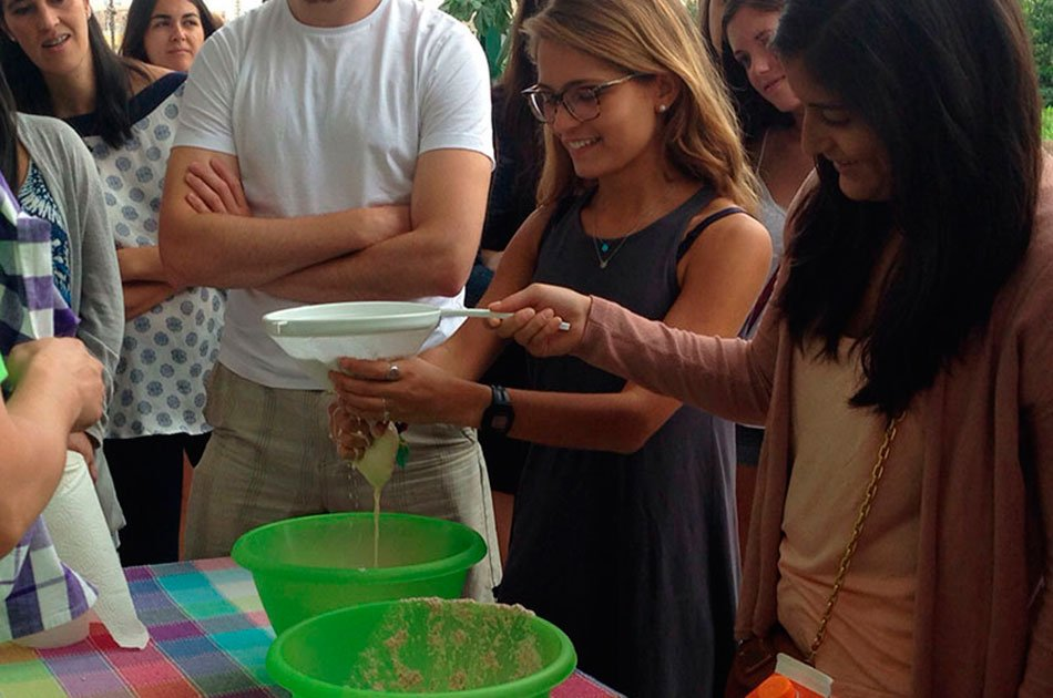 Private Tour: All about Horchata and Chufa in Valencia