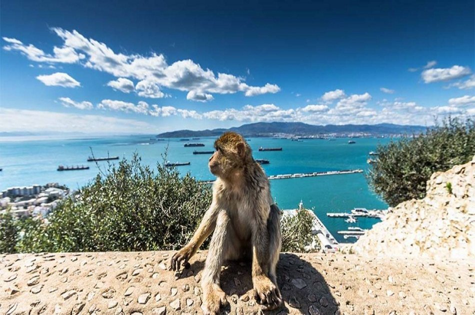 Private Tour of Gibraltar from Malaga