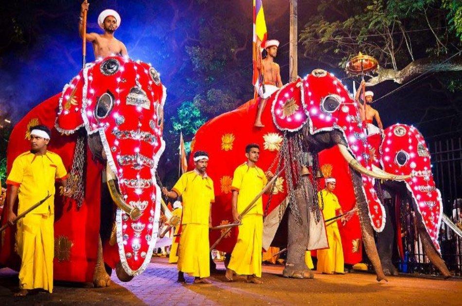 10 Days Luxury Private Culture Tour in Sri Lanka