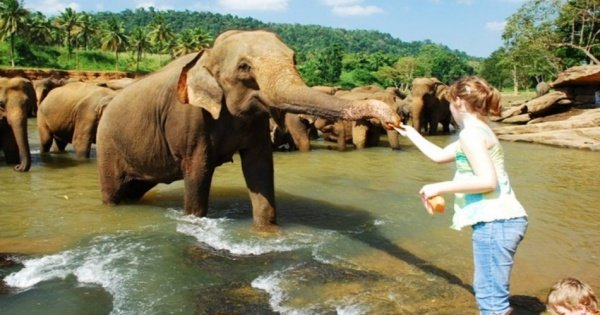 Adventure 4 Day Tour in Sri Lanka
