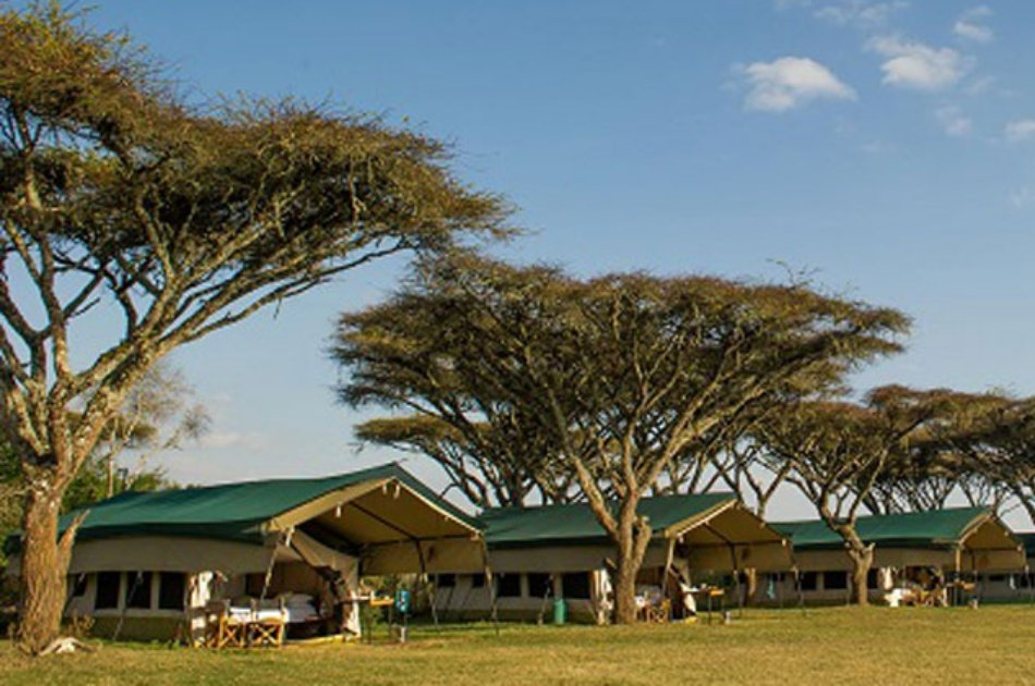 12 Days  Kenya and Tanzania Safari