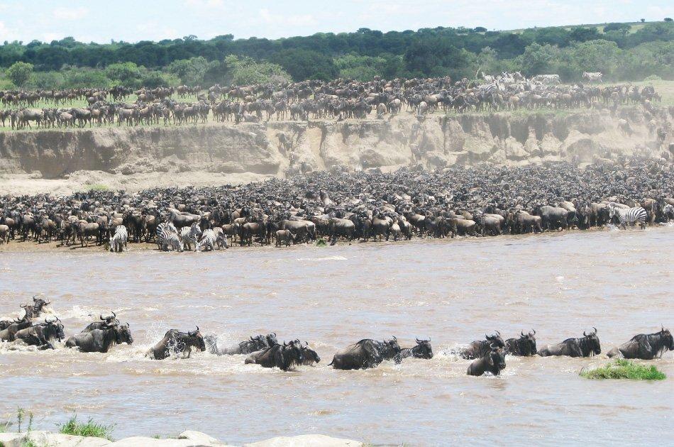 5 Day Natural Wonders of Africa Safari