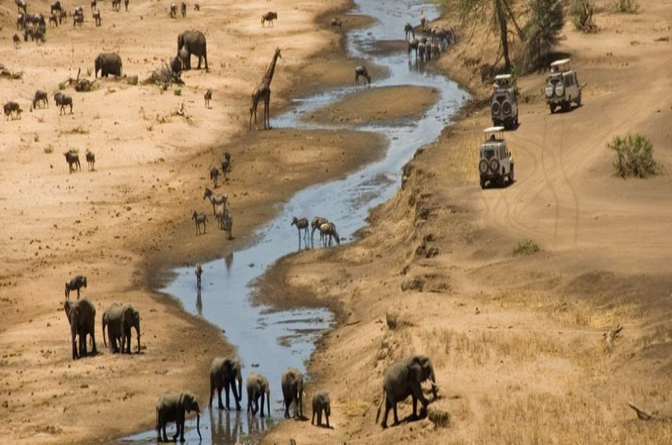 6 Days / 5 Nights in Tanzania - Culture and Sightseeing