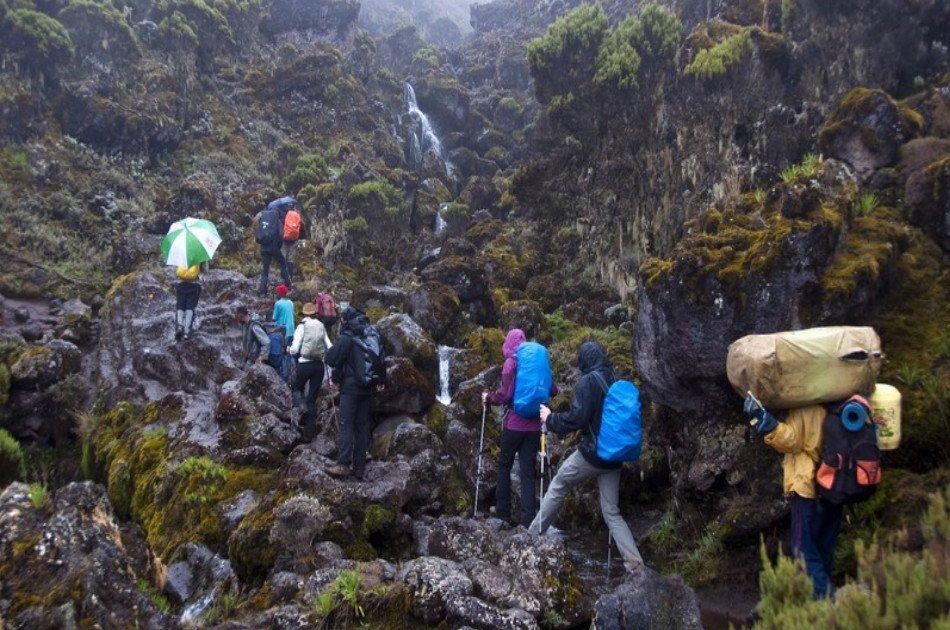 6 Days Mount Kilimanjaro Trekking via Machame Route  2 Nights Hotel Stay