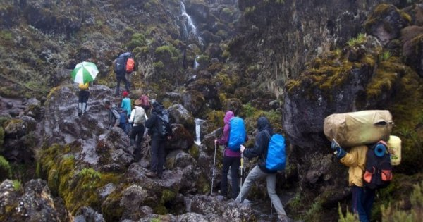 6 Days Mount Kilimanjaro Trekking via Machame Route  2 Nights Hotel Stay
