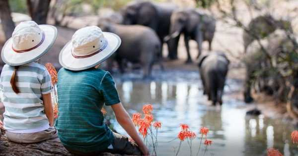 7 Day Tanzania Family Safaris