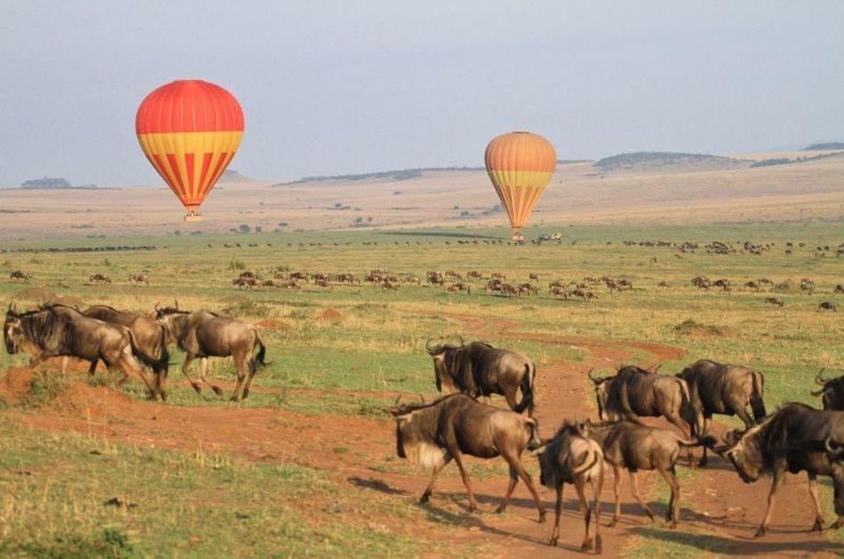 7 Days Best of Tanzania on Safari