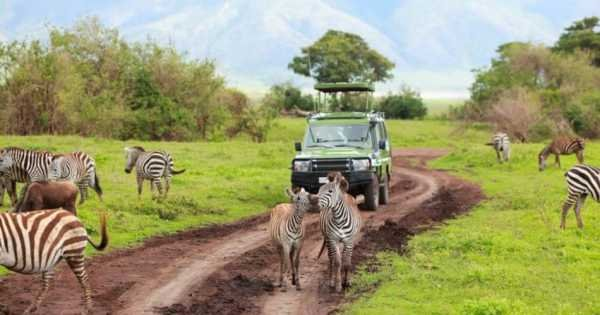 8-Days Authentic Small Group Tanzania Safari
