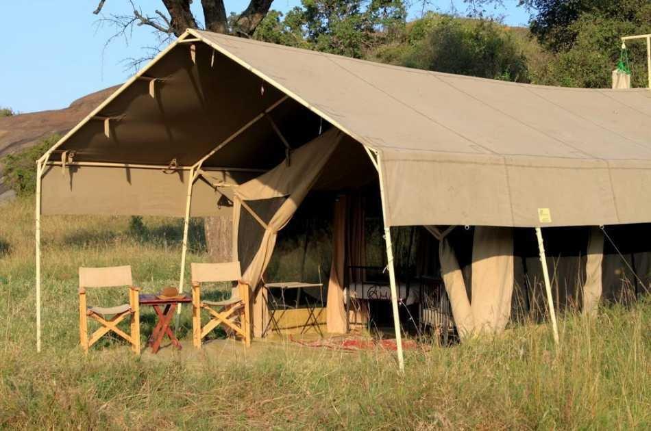 8 Days Wildlife & Balloon Safari