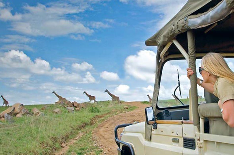 A Thrilling Day Safari to Ngorongoro Crater from Arusha