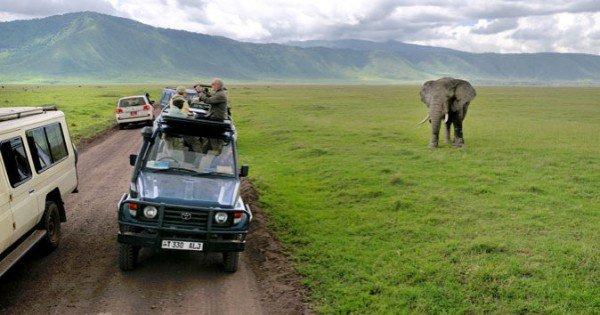 Tanzania Where the Experience Begins