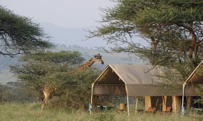 The Best Tanzania Has to Offer, Quality Lodge Safari