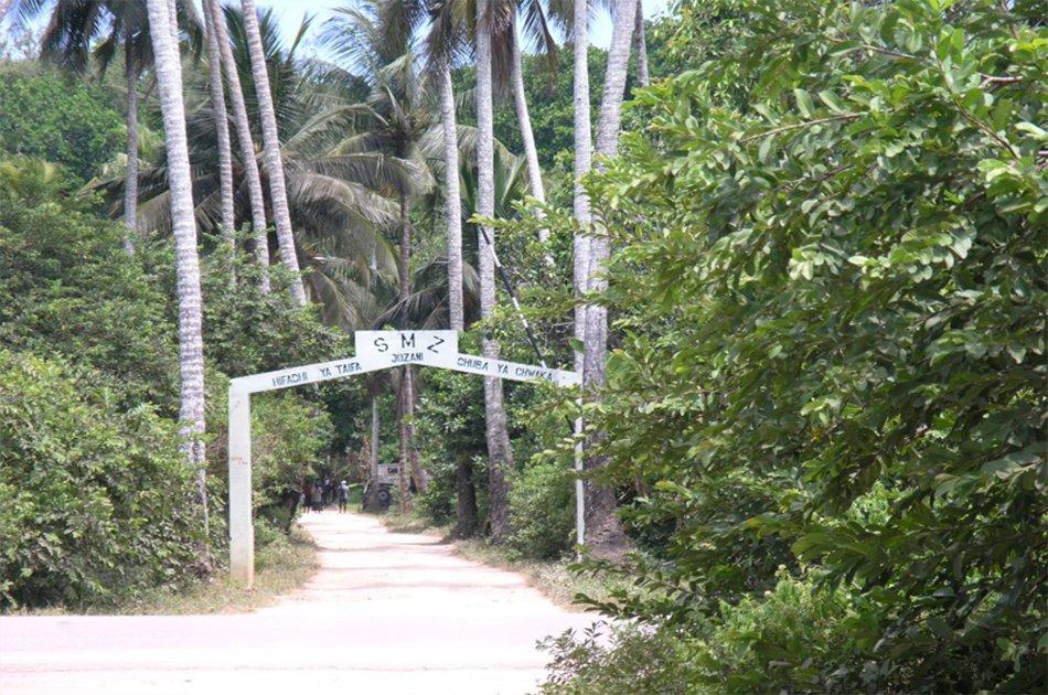 Experience Jozani Forest on a 3 Hr Safari Tour in Zanzibar