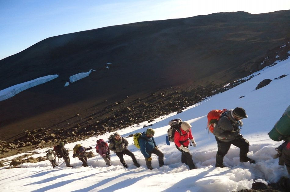 From the Peak of Kilimanjaro, Head to the Bush and Beach 8 Day Tour