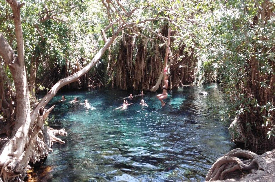Kikuletwa Hot Spring Swimming Group Day Tour from Moshi