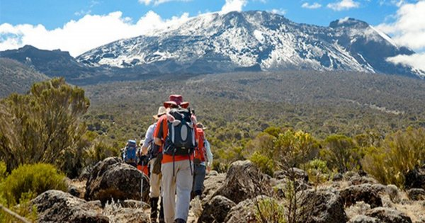 Mountain Kilimanjaro Group Day Hike via Marangu Route