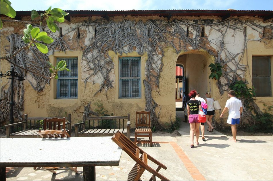 Prison Island Half Day Tour from Stone Town