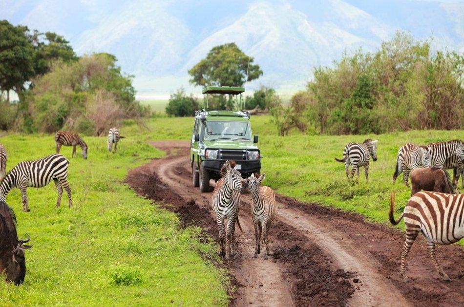 Tanzania 3 Days Selous Game Reserve Safari
