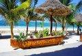 Zanzibar's Unbelievable Uroa Blue Full-day Adventure