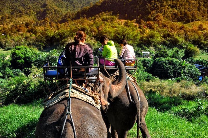 Chiang Mai Trekking Experiences