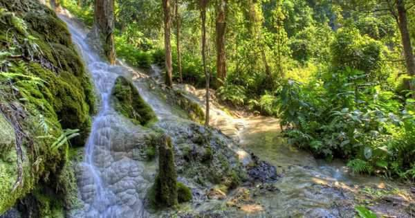 Explore the Bua Tong Waterfall