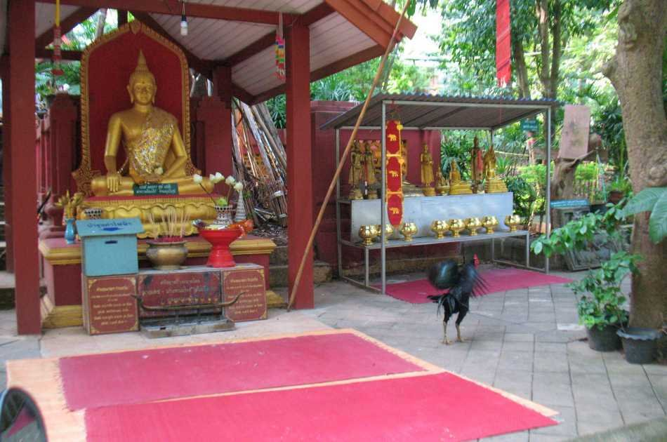 Private Day Tour of Wat Prathat Doi Kham, Wat Phalad, Wat U Mong in Chiang Mai