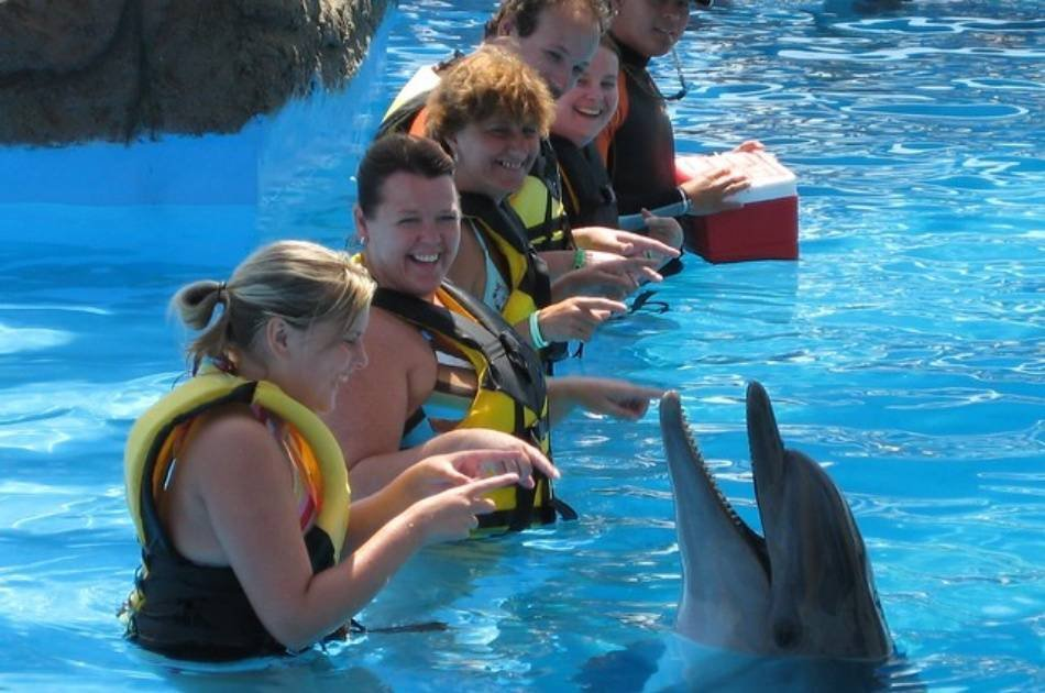 Ride the Slides on a Adaland Waterpark Tour in Kusadasi