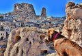 With a Group Tour, Explore the Heart of Cappadocia