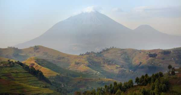 4-Day Gorillas & Golden Monkey tracking tour  From Kigali to Bwindi