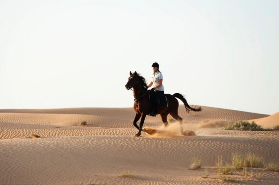 Private 4x4 Dubai Desert Safari with Dinner