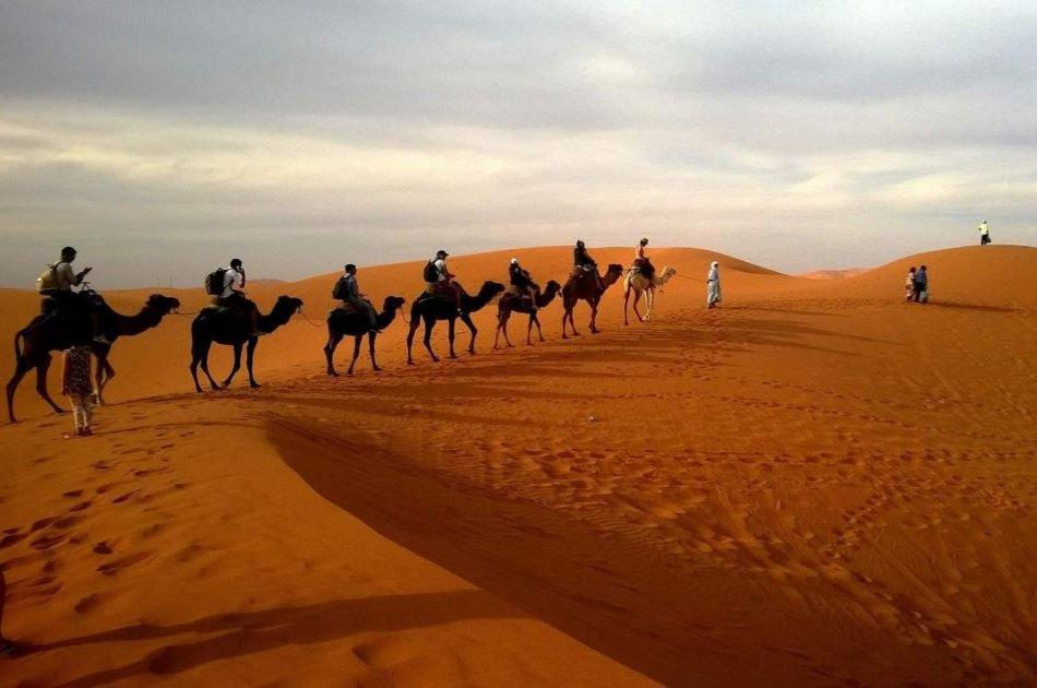 Private Morning Safari of Arabian Desert