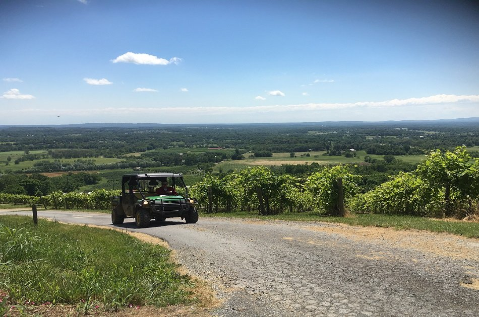 Customized Full Day Private Wine Tour in Virginia