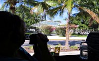 Miami Everglades Tours • Miami's Backyard • Nature at Its Best!