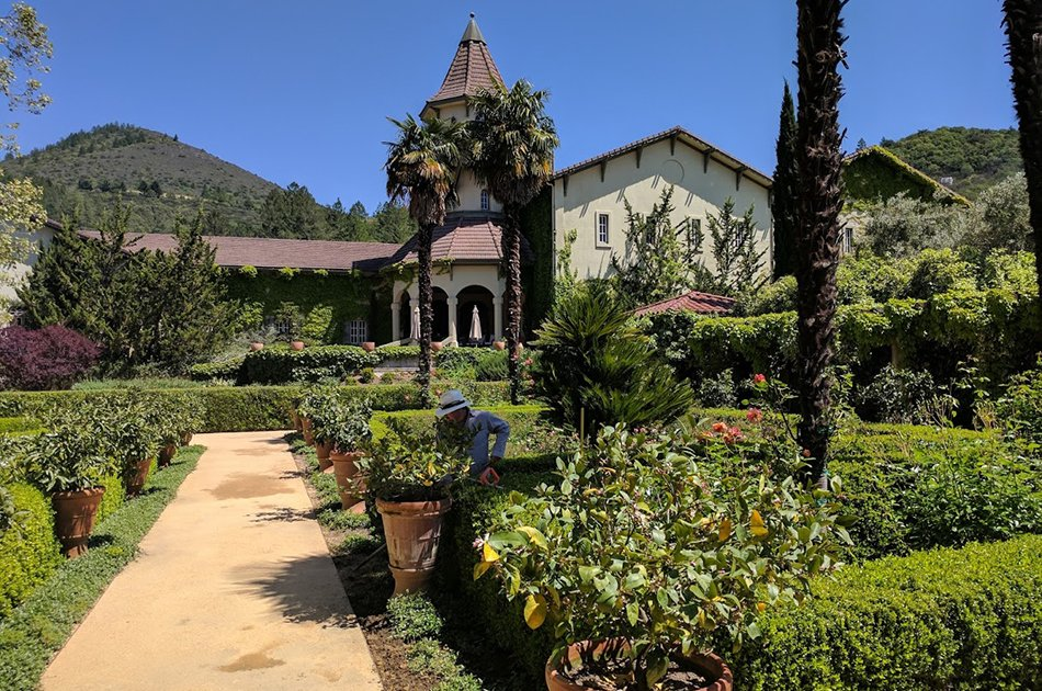 Napa Valley 8 Hour Wine Tour from San Francisco by Luxury Sedan
