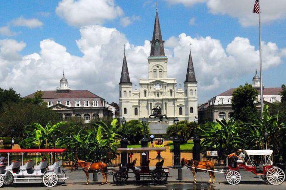 Private Citywide Driving and Plantation Combination Tour