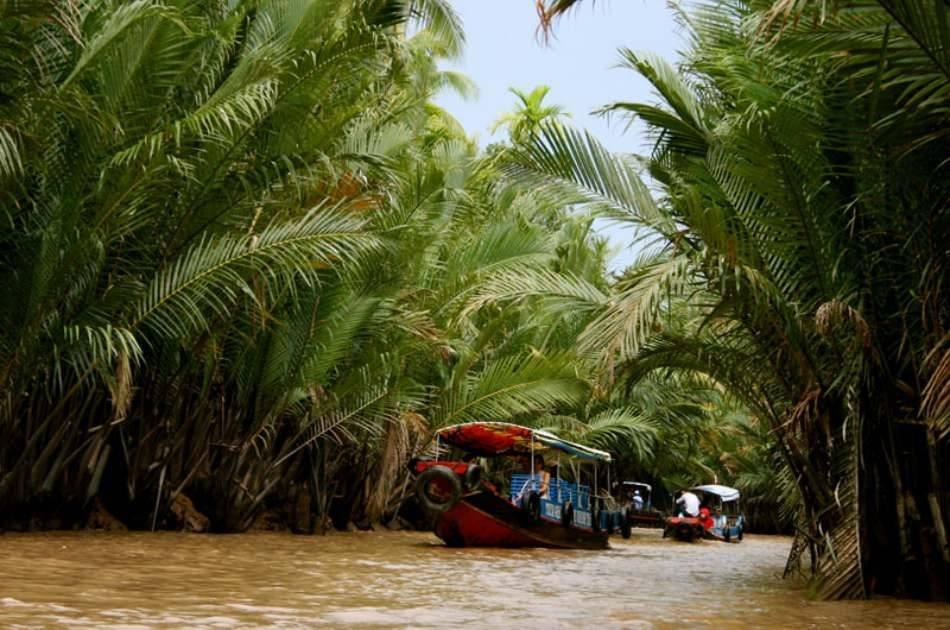 Cooking on Mekong Delta & Cai Be Floating Market
