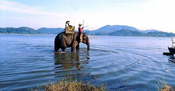 Da Lat Elephant Riding