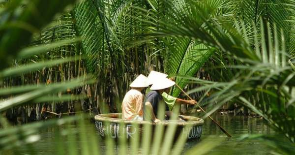 Hoian Basket Boat & Bike Half Day Tour