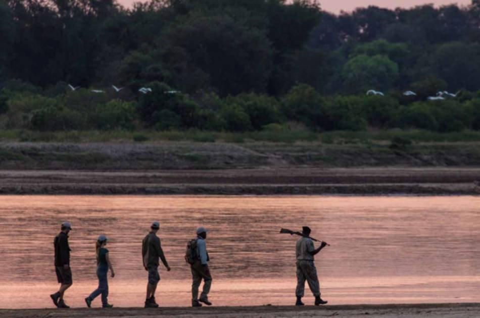 7 Days South Luangwa Affordable Zambia Safari