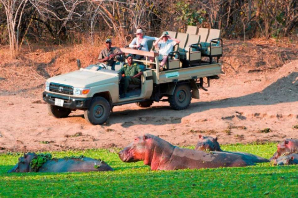 7 Days South Luangwa and Lower Zambezi – Luxury Safari