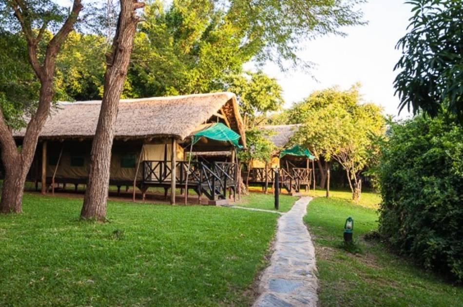 7 Days – South Luangwa & Lower Zambezi Zambia Safari