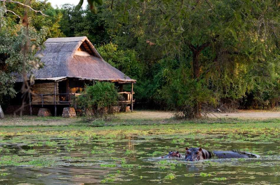 8 Days Stunning Zambia Safari Tour