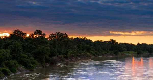 South Luangwa & Lower Zambezi 7 Day Safari
