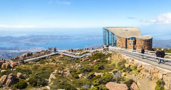 Cable Car Your Way to Views on Private Sightseeing Tours of Wellington