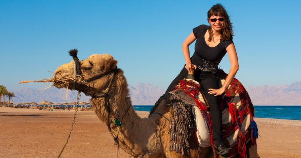 To Have Fun and Adventure Is Not Taboo When on a Private Tour of Taba