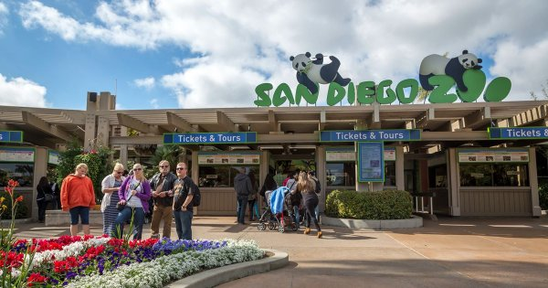 For Activities to Savor, Sights to See, Take a Private Tour of San Diego