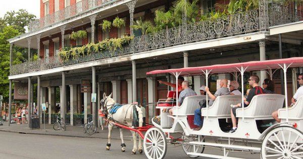 Lose Yourself in the Excitement Found on a Private Tour of Louisiana