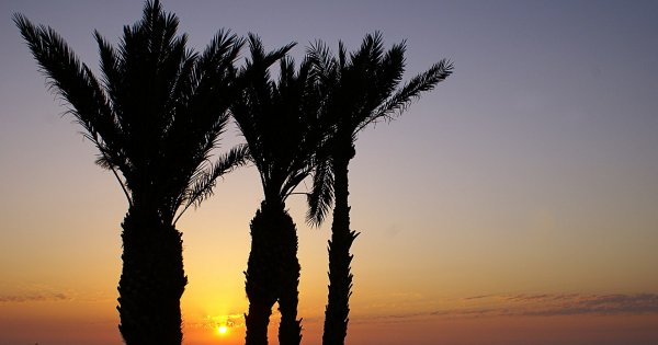 Souks, Sights and Beaches, Island Hop to Djerba on a Private Tour